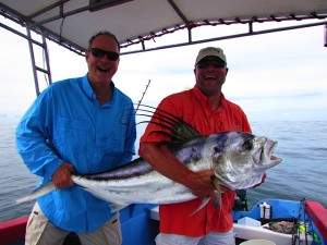 Big Rooster Fish Mal Pais, Costa Rica